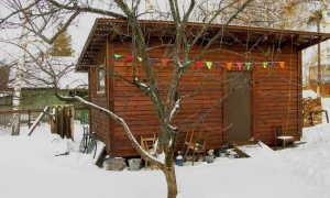 Как построить сарай с односкатной крышей своими руками — пошаговая инструкция (фото, видео, схемы)