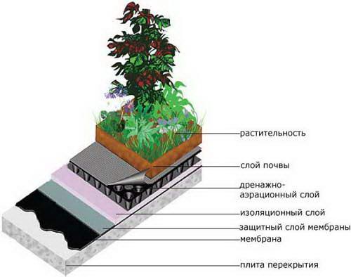 Устройство эксплуатируемой крыши с зелеными насаждениями