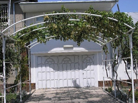 Арочный навес для выращивания винограда