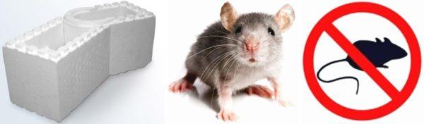 Часто слышны истории о повышенной порче пенопласта мышами.