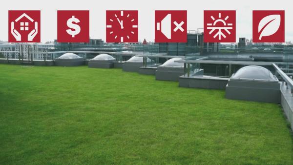 Зеленая кровля – это отличный внешний вид, высокая оценочная стоимость здания, продолжительный ресурс эксплуатации, хорошая звуко- и теплоизоляция